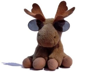 picture of Mikey the Elk